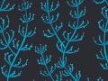 13-451_seagrass2